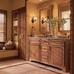 Captivating Earth Tone Bathroom